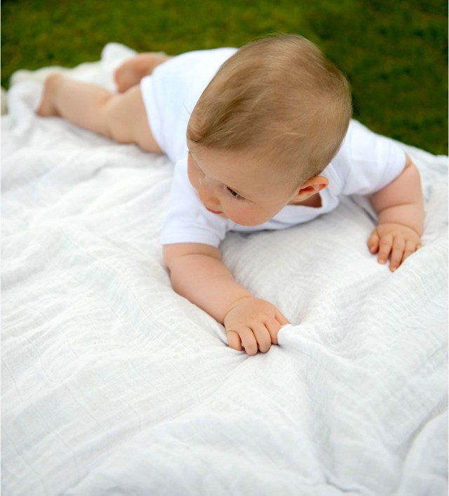Little Bamboo Muslin Swaddle - 3 Pack