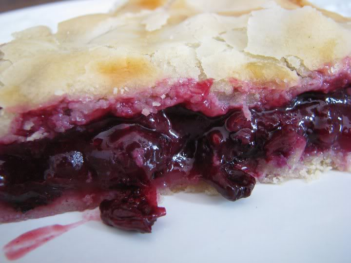 Blueberry Pie Recipe Betty Crocker Style