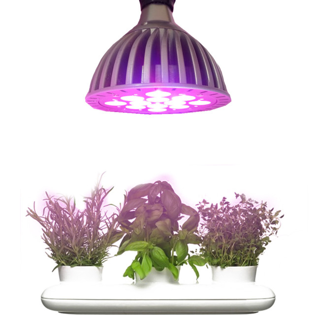 LED Grow Light for Garden Lovers - Review + Giveaway
