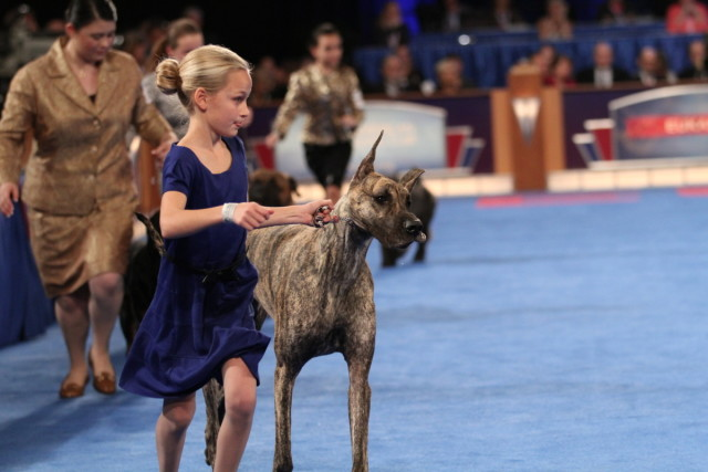 EUKANUBA™ National Championships in Orlando Florida  #EukanubaChamps
