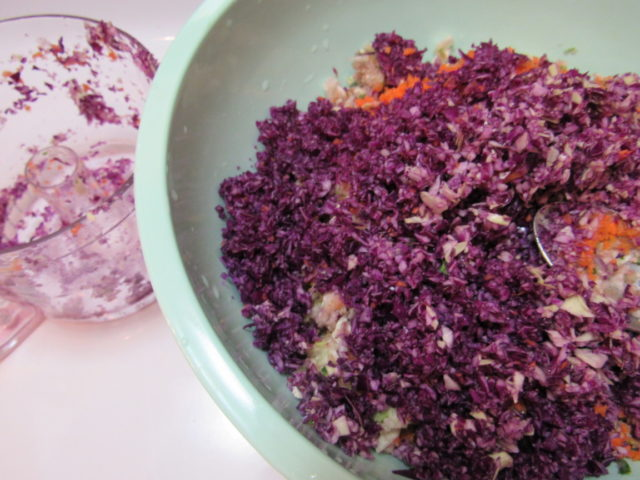 Best Darn Coleslaw Recipe in the World