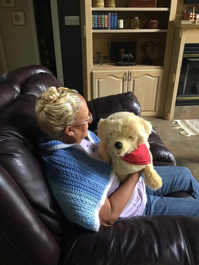 Give the gift of Joy; Joy For All Companion Pets #JoyForAll, #IC, #ad