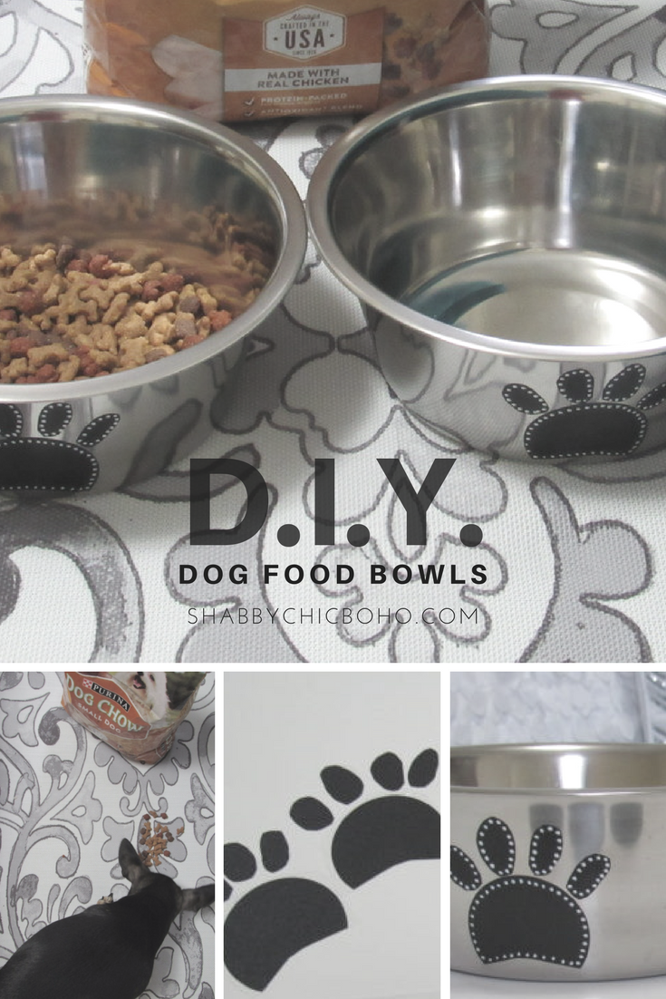 Travel DIY Pet Dishes for Your Dog