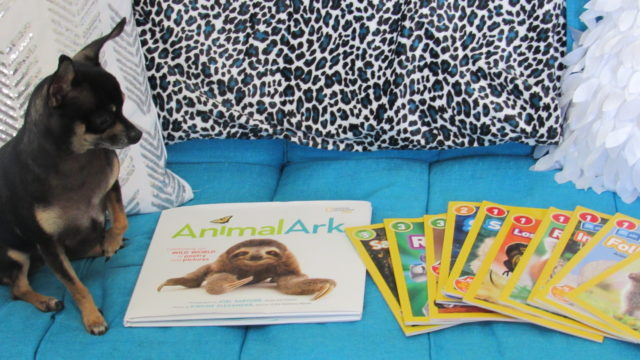 Leveled Readers and Super Readers program for Kids, National Geographic #MomsMeet