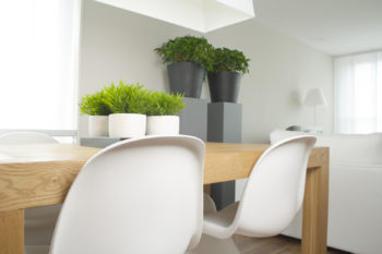 September 23rd Is National Declutter Day: How To Tackle The Clutter In Your Home, Room By Room