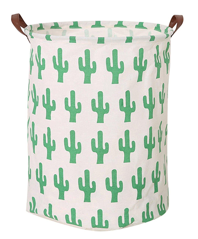 Cacti Home Decor