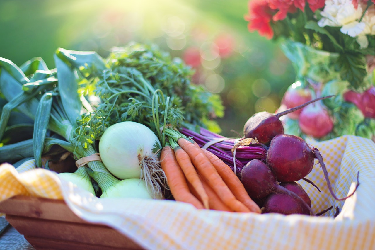 4 Excellent Benefits Of Growing Your Own Fruit & Vegetables