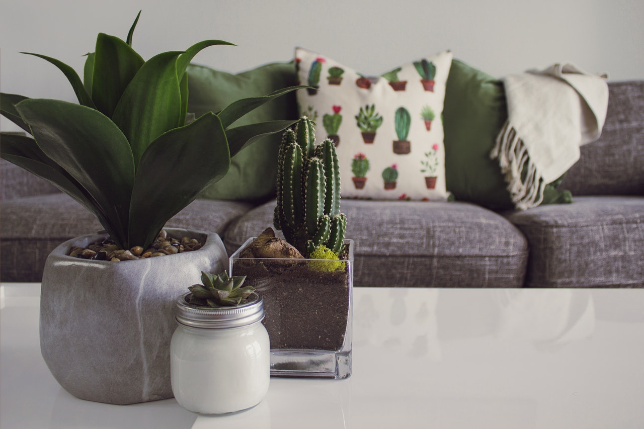 How can designing with plants help you sleep better?
