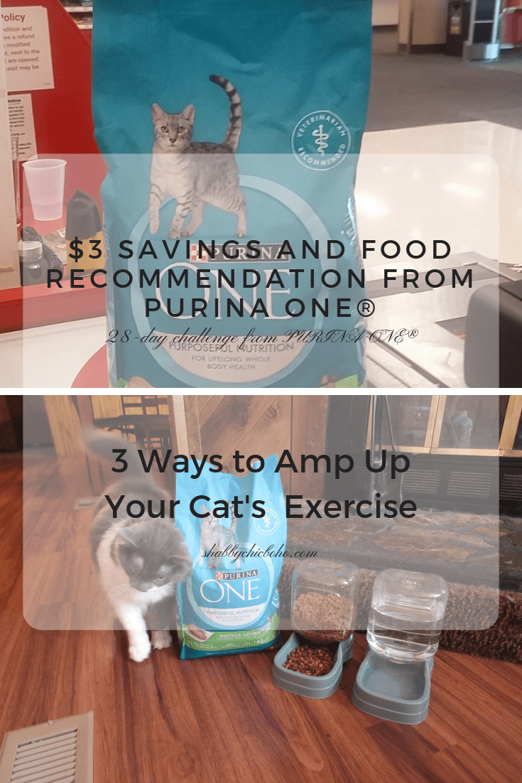$3 Savings And Food Recommendation From Purina ONE® #PurinaONEPets