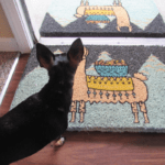 Larry the Llama Doormat from Uncommon Goods