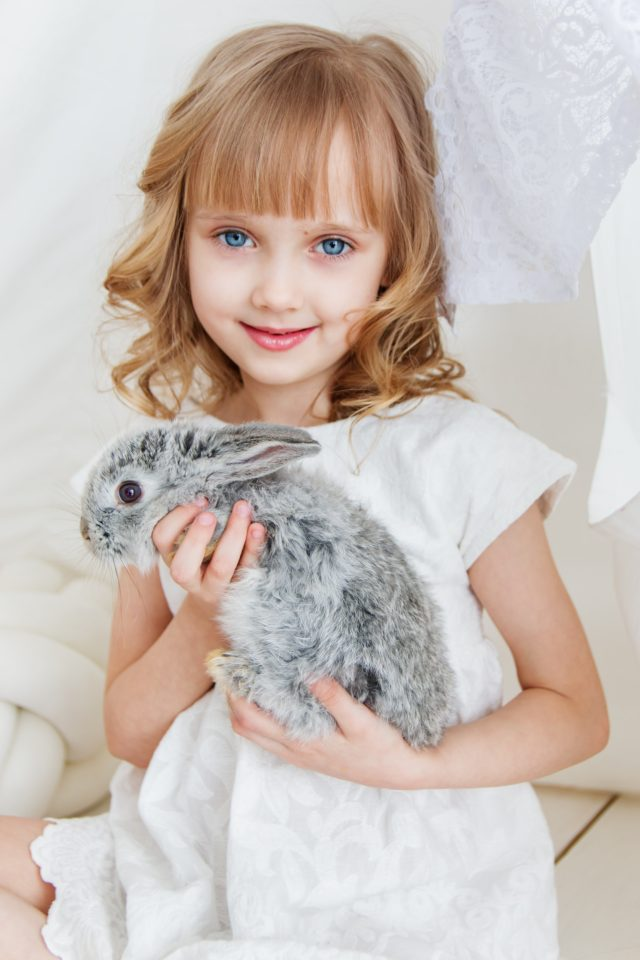 The Best Pets For Families