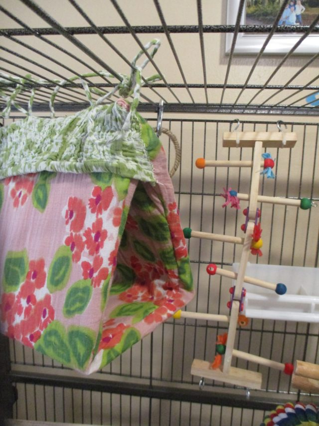 D.I.Y. Bird Pouch For Pet Birds