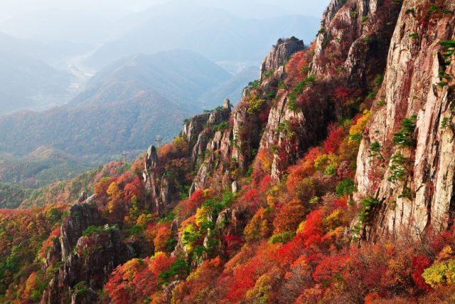 Falling for Foliage: 9 Amazing Destinations to See Autumn Scenery in the US