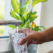 Faucet Water: 7 Key Signs Your Drinking Water Isn't Clean