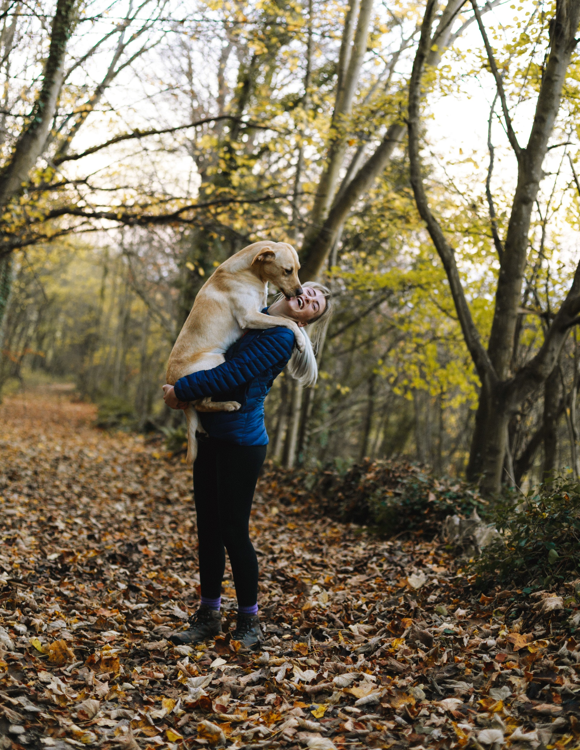 How pets can naturally change your lifestyle?
