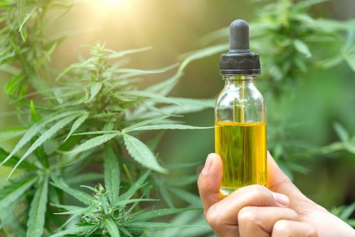 The Importance of CBD Oils