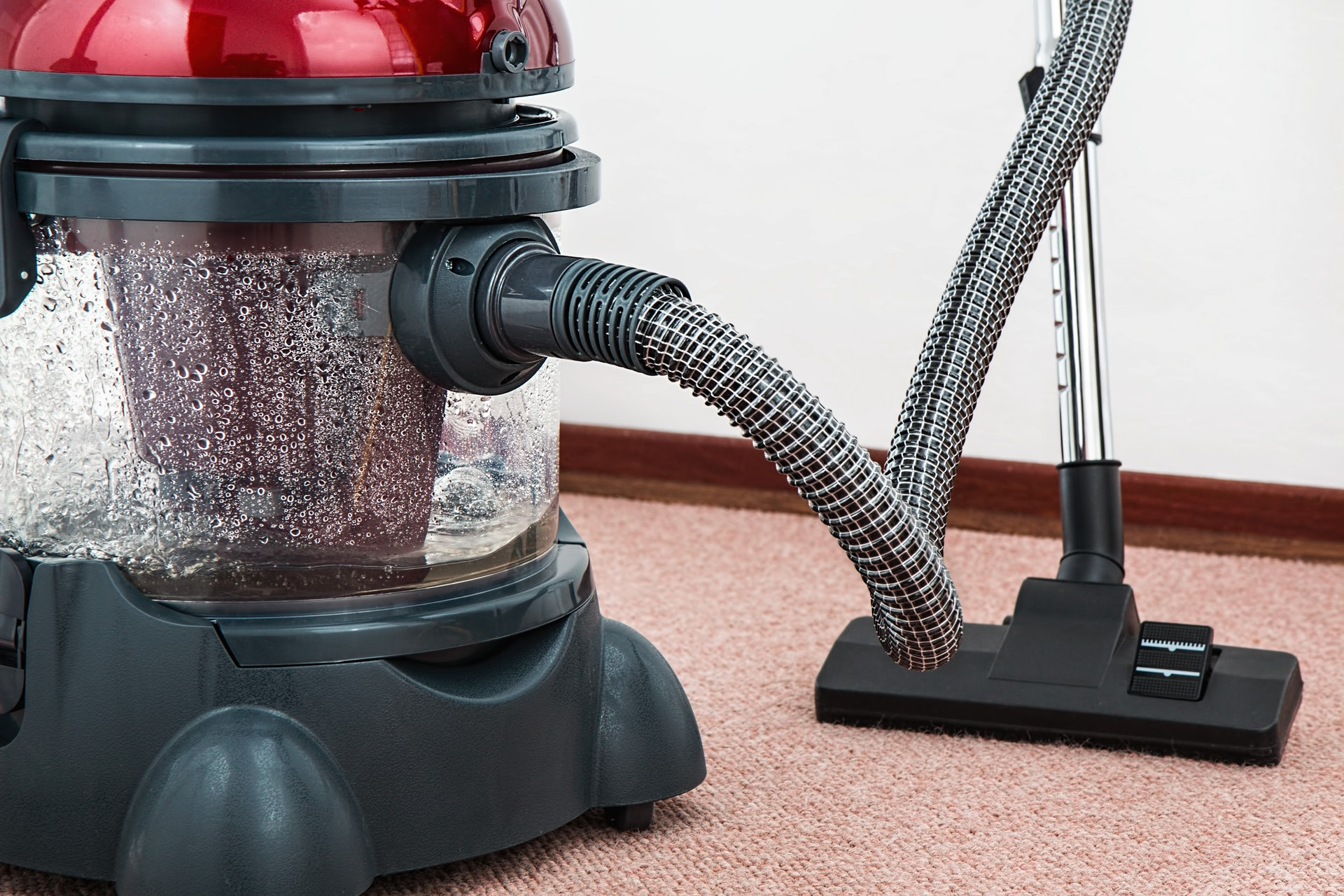 How to Maintain Your New Carpet?