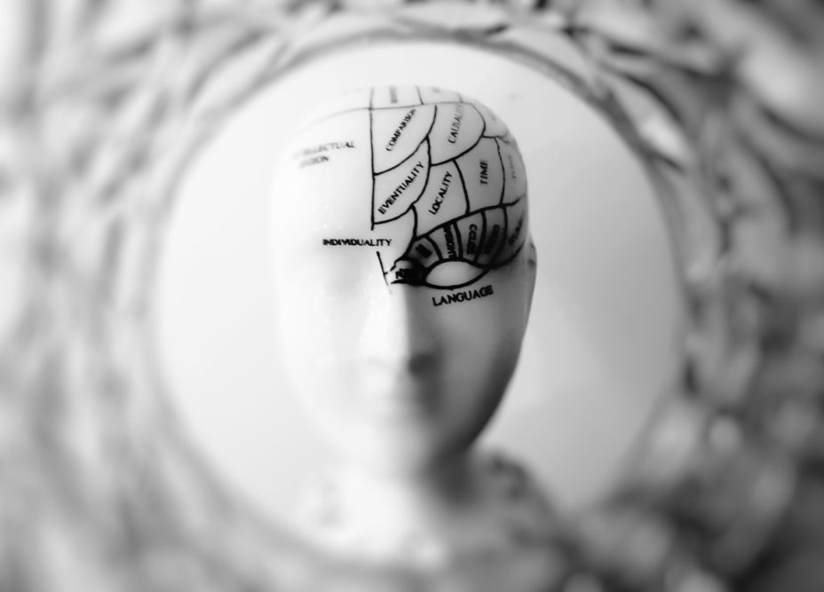A Beginner's Guide To Brain Training