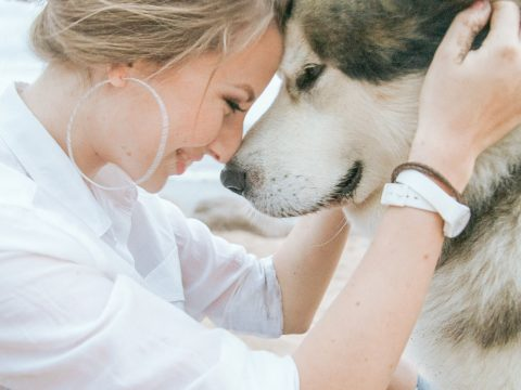 Warning Signs All Dog Owners Should Know