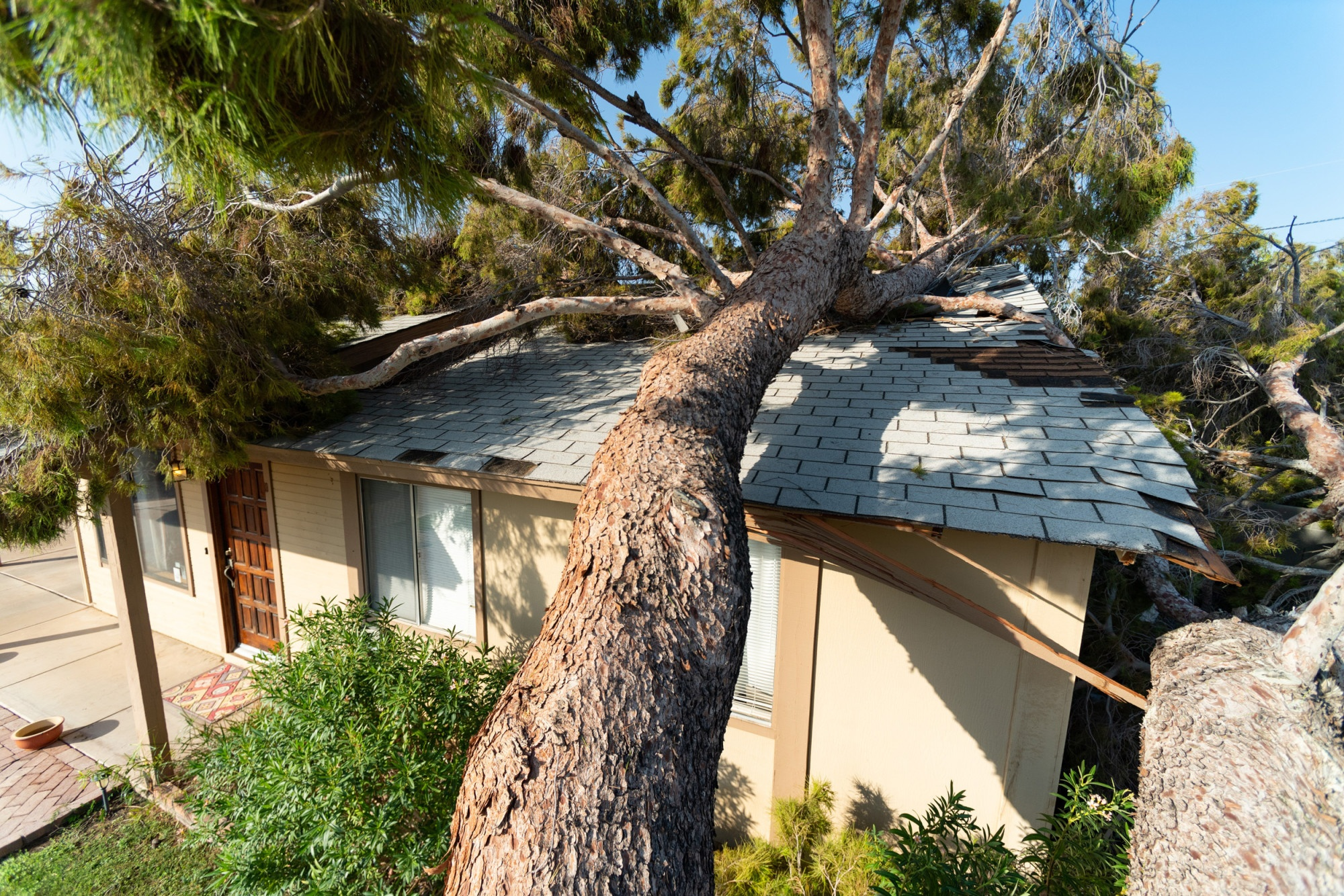 What to Do After a Storm: 5 Top Tips for Disaster Repair