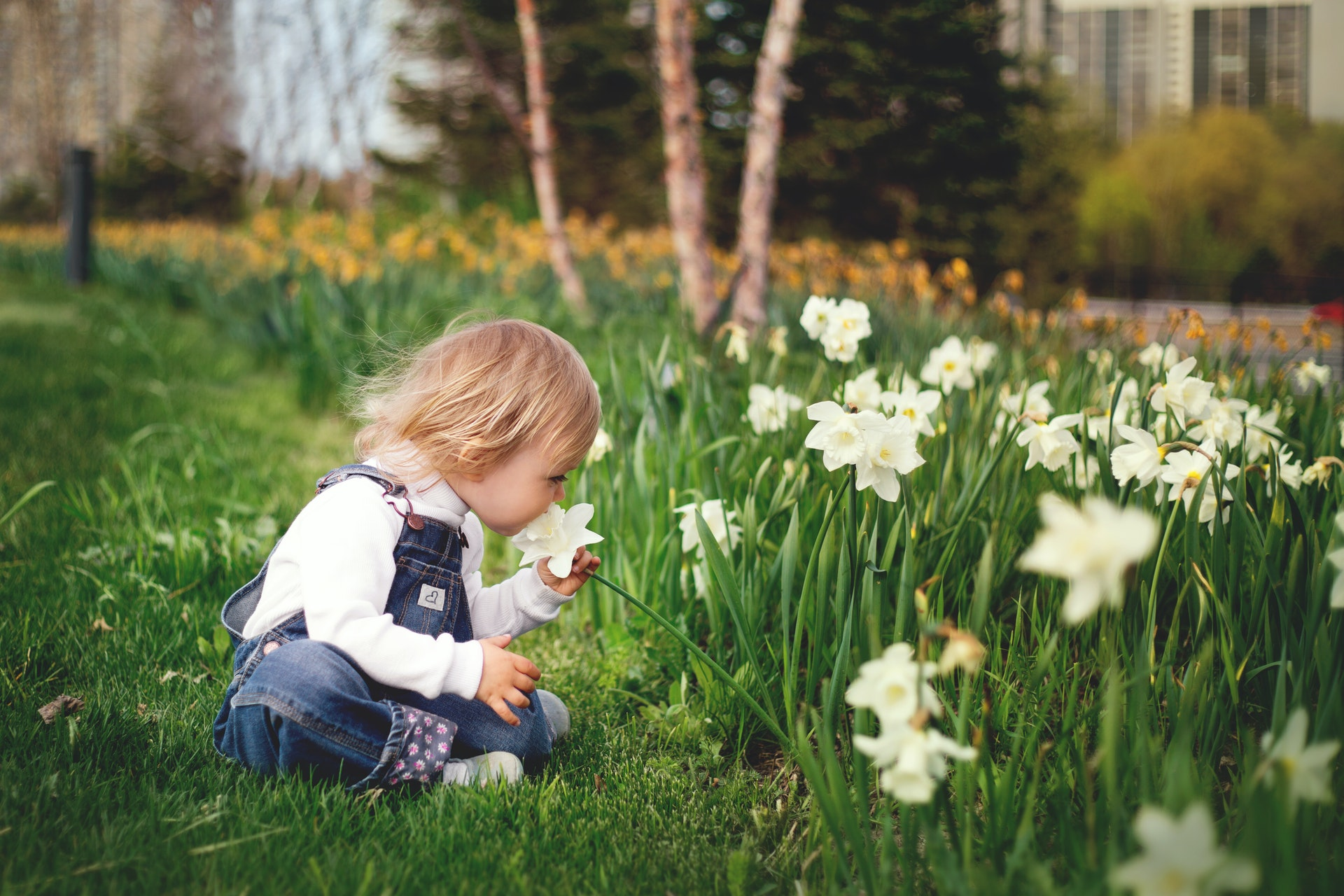 How To Make Your Garden Child-Friendly