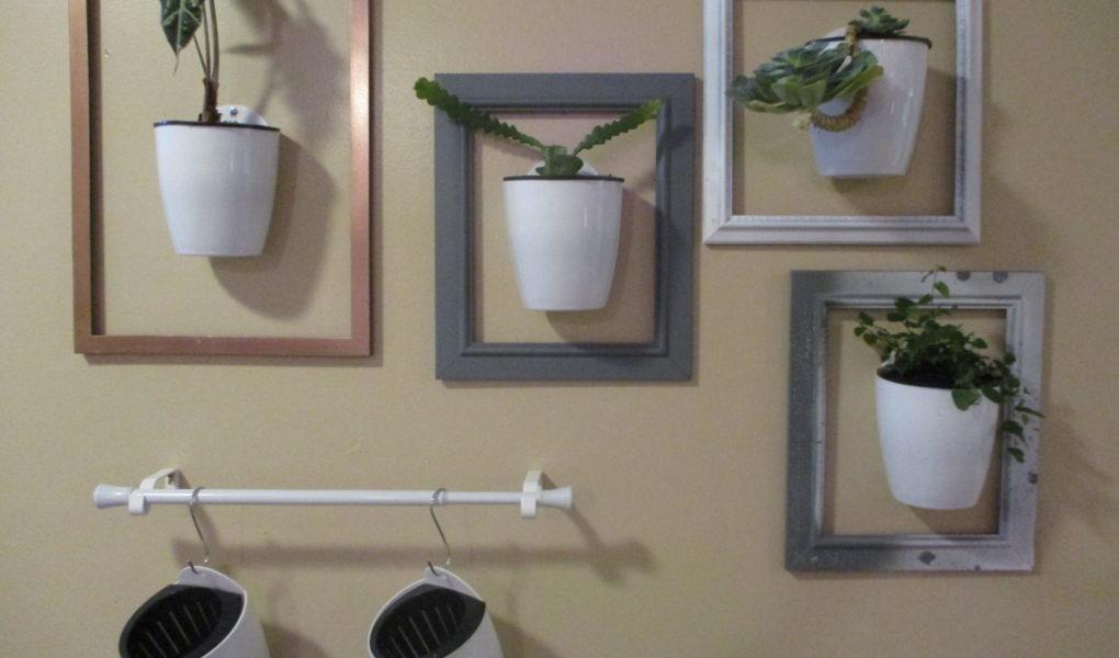 DIY Living Plant Wall