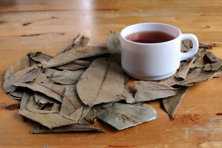 3 Simple Steps to Making Kratom Tea at Home