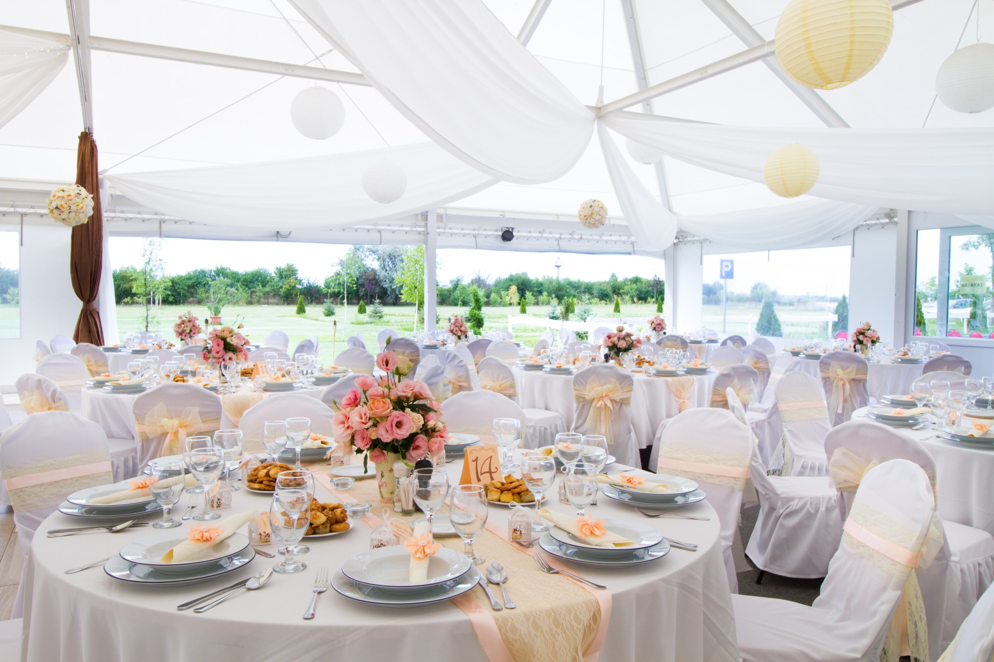 Renting a Party Canopy: What You Need to Know