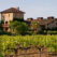Napa County: Top 5 Best Things to Do in Napa Valley