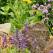 4 Brilliant Ways To Accentuate Your Garden